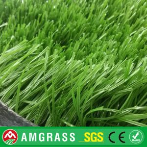 High Quality Football Fied Soccer S Shape Monofile PE Artificial Grass pictures & photos
