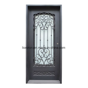 Wrought Iron Patio Single Doors with Glass for House pictures & photos