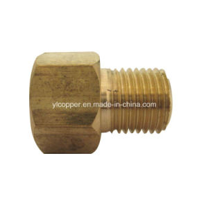 Brass Male Connector pictures & photos