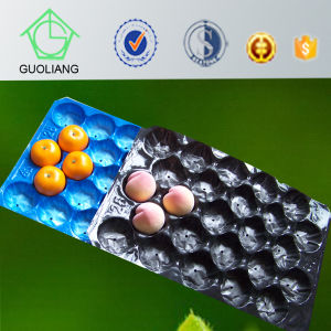 White Custom Vacuum Forming Disposable Fruit Packaging Tray in Walmart pictures & photos