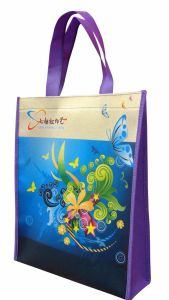 Cheap and High Quality Non Woven Shopping Bag with Offset Printing pictures & photos