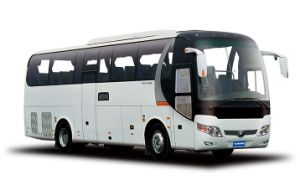10-11m Coach Single Deck 43+1+1seats