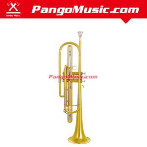 Bb Tone Brass Body Bass Trumpet (Pango PMBT-850) pictures & photos