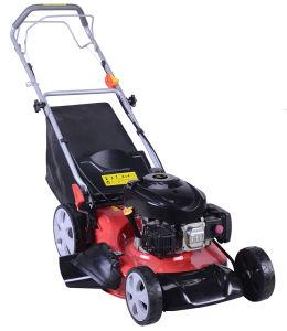 200cc Lawn Mower Tk1p70f-20-S-Ab-U pictures & photos