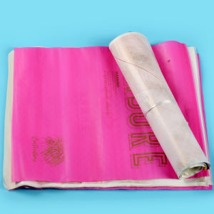 Multicolor Printed LDPE Ziplock Bags for Garments (FLZ-9225) pictures & photos