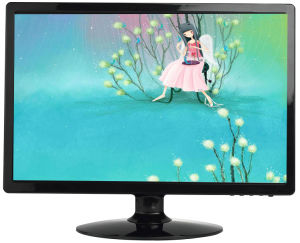 19 Inch Widescreen LCD Monitor pictures & photos