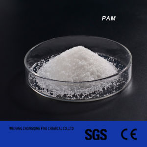 Flocculant Polyacrylamide PAM for Water Treatment pictures & photos