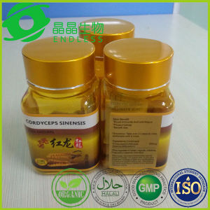 Kidney Tonic Yarsagumba Capsules Benefit for Men Low Price pictures & photos