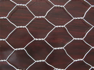 Hexagonal Wire Mesh, Economical Chicken Wire Netting pictures & photos