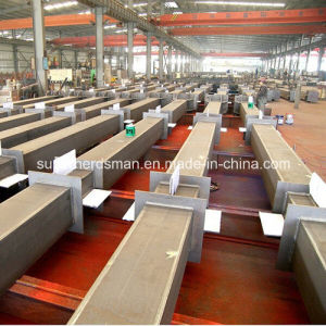 Super Herdsman Steel Frame Poultry Farm and House pictures & photos