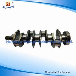 Diesel Engine Parts Crankshaft for Perkins 4.236/4.248 31315981 4.203/D4.203/3.152/Perkins T3 pictures & photos