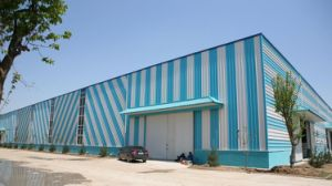 Low Cost Prefabricated Steel Structure Workshop/Warehouse (SSWW-16076) pictures & photos