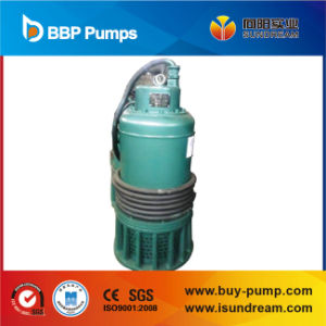 Submersible Pump with Float Switch, Water Pump, Garden Pump pictures & photos
