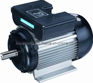 Single Phase Electrical Motors (YL MY ML YC)