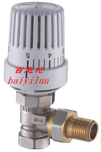 CE Liquid Sensor Thermostat Head with Radiator Valve