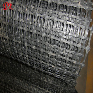 Tgsg6060 Biaxial Geogrid pictures & photos