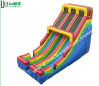 Giant Double Lane Inflatable Slide (D077)