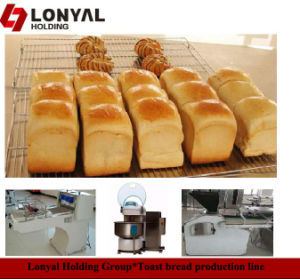 Bakery Products for All Kinds of Bread Production