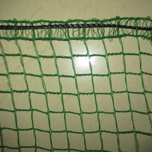 Diamond Agricultural Anti Bird Net with UV Protection pictures & photos