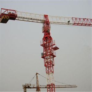 Flat Top Factory Offere 4-12t Tower Crane pictures & photos