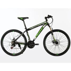 "21sp Steel Mountain Bike 24""/26"" Bicicletas (FP-MTB-ST047) pictures & photos"