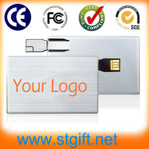 Shenzhen Factory Provide Name Card Plastic Card USB Drive with Color Printing Flash Memory