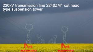 Megatro 220kv Transmission Line 2240 Zm1 Cat Head Type Suspension Tower pictures & photos