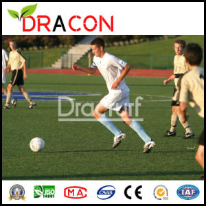 Professional Football Field Artificial Turf (G-5503) pictures & photos