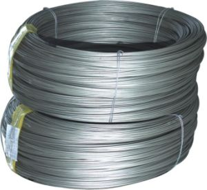 Plastic Coated Stainless Steel Wire Rope pictures & photos