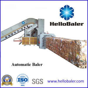 Hellobaler Waste Paper Baler Supplier of China pictures & photos