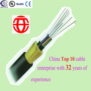 8 Core Double Sheath Non-Armored All Dielectric Self-Supporting Optical Fiber Cable From China pictures & photos