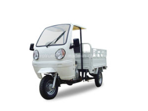 Sunshine Proof Tricycle/Cabin Tricycle (TR-5) pictures & photos