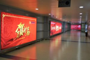 Airport Wall Mounted Advertising Display Light Box pictures & photos