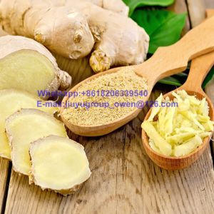 Shandong Origin Top Quality New Crop Air Fresh Ginger pictures & photos