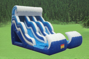 Inflatable Bouncer or Inflatable Toys Inflatable Slide pictures & photos