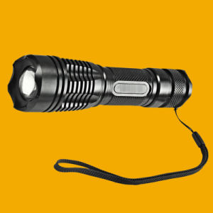 Bike LED Flashlight, Bicycle LED Flashlight for Sale Tim-Sg-F2 pictures & photos