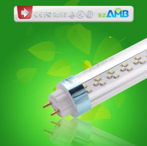 Top Quality LED T8 Fluorescent Light with 100lumens/W