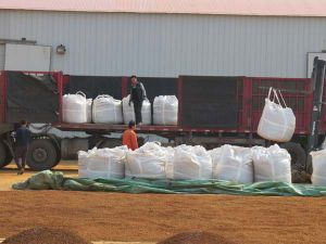 Iron Oxide Desulfurizer with Competitive Price in South Korea pictures & photos