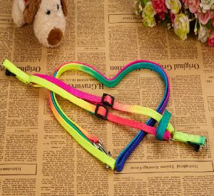 Pet Dog Puppy Rainbow Collar & Leash (lsh2003) pictures & photos