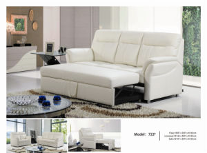 Electric Recliner Sofa USA L&P Mechanism Sofa Down Sofa (722#) pictures & photos