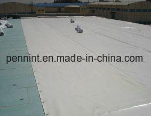 OEM High Reflective White/Grey Tpo Waterproof Membrane pictures & photos