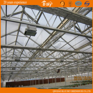Long Lfie-Span Glass Greenhouse for Planting Vegetables and Fruits pictures & photos