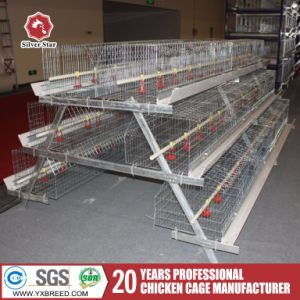 Poultry Cage / Bird Cage / Chicken Cage pictures & photos
