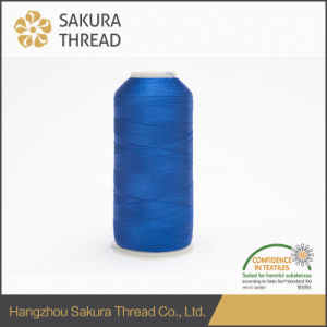 120d/2 4000yard Rayon/Viscose Thread for Apparel Embroidery pictures & photos