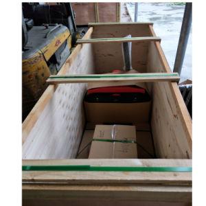 Electric Pallet Jack Truck 1500kgs pictures & photos