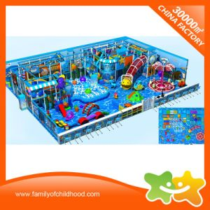 Multifunctional Ocean Theme Indoor Play Centre Equipment for Sale pictures & photos