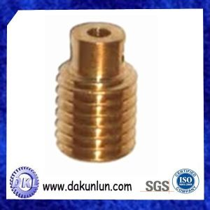 Customized Small Brass/Plastic Worm Gear Shaft pictures & photos