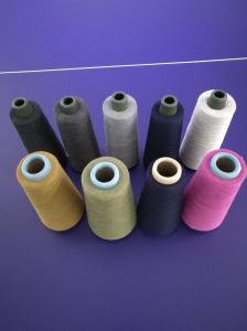 Bleach Silver Fiber Anti-Bacterial Yarn pictures & photos