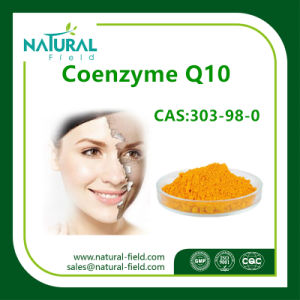 Hot Sale Pure Anti-Oxidation Coenzyme Q10 Powder pictures & photos
