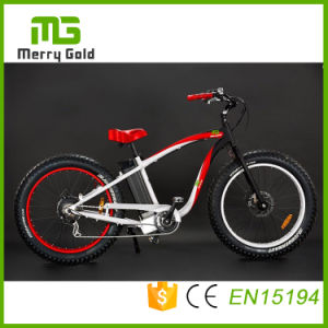 Hummer Ebike 48V 500W Cool Fat Tyre Electric Bike E-Bicycle pictures & photos